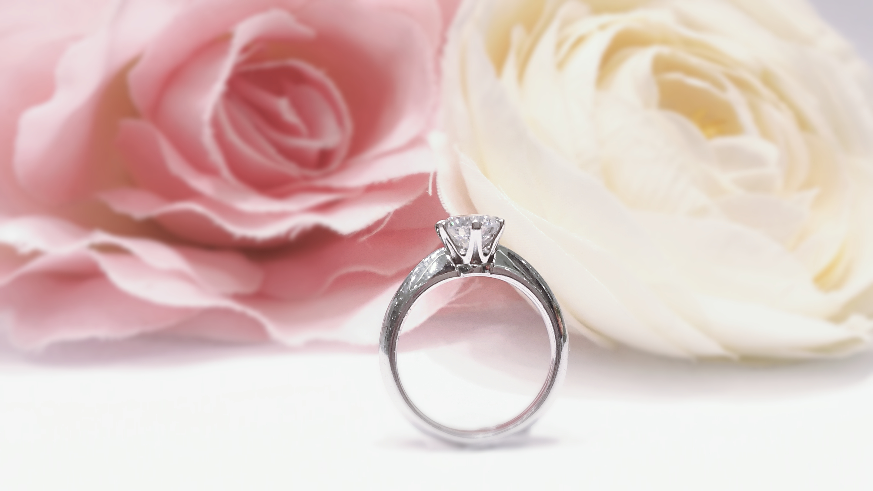 The Cathedral Setting Engagement rings Collection - VENUS TEARS ...