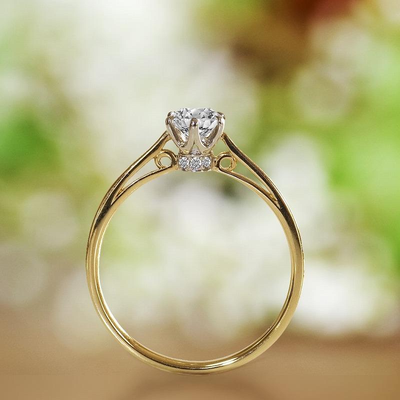 Engagement Ring ? Singapore:Pont de Sully 1305_01