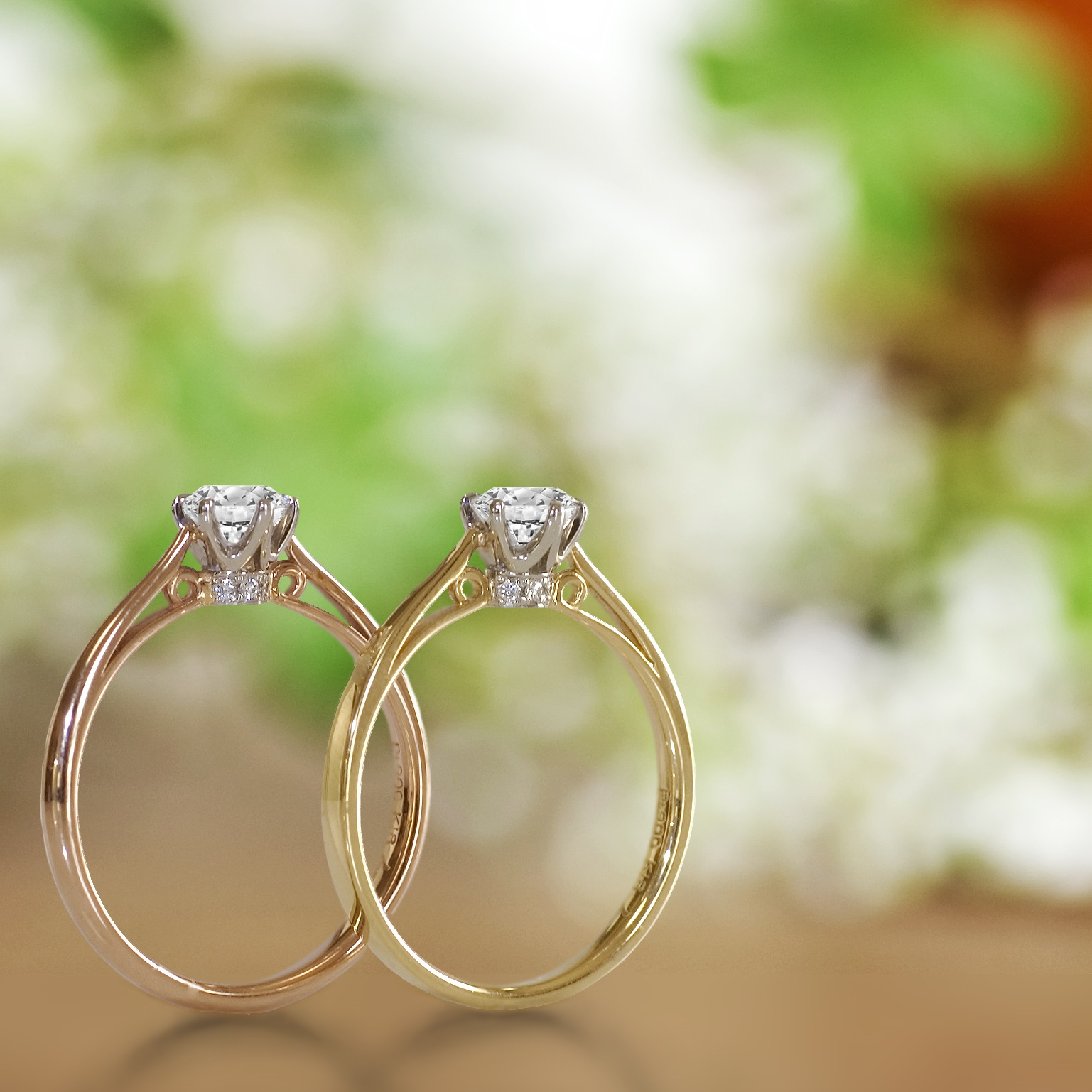 the classic for hellerwedding michelleboydphoto bride classy rings gallery engagement brides timeless